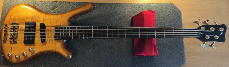 The Warwick FNA Jazzman 5 string Bass Guitar