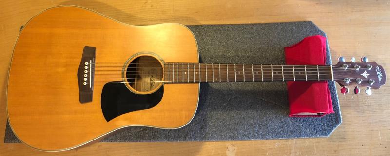 Aria Pro 2 Acoustic