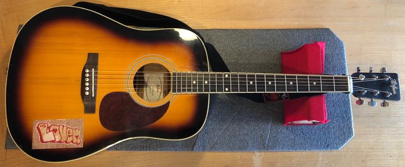 Hofner Acoustic