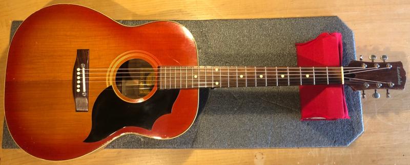 Landola Acoustic